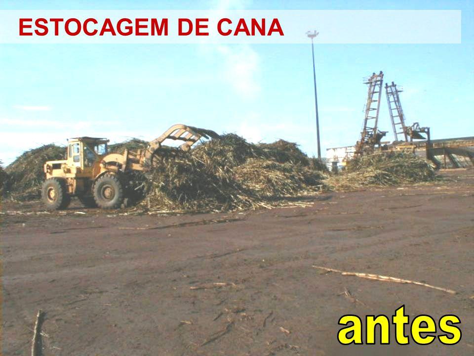 ESTOCAGEM DE CANA
