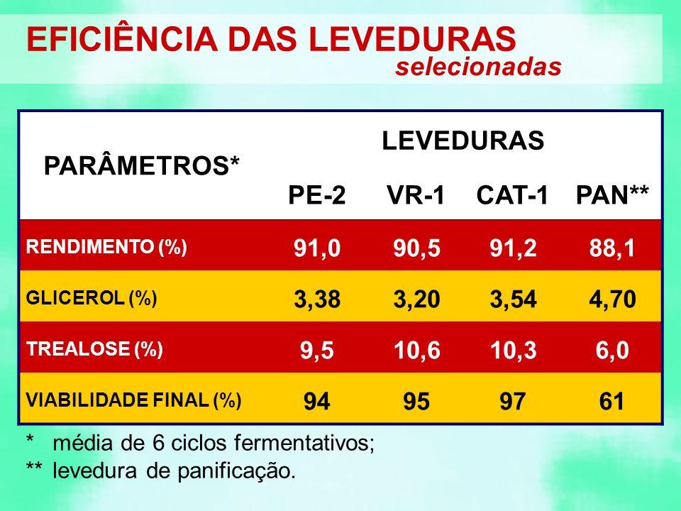 EFICIÊNCIA DAS LEVEDURAS selecionadas PARÂMETROS* LEVEDURAS PE-2VR-1CAT-1PAN** RENDIMENTO (%) 91,090,591,288,1 GLICEROL (%) 3,383,203,544,70 TREALOSE