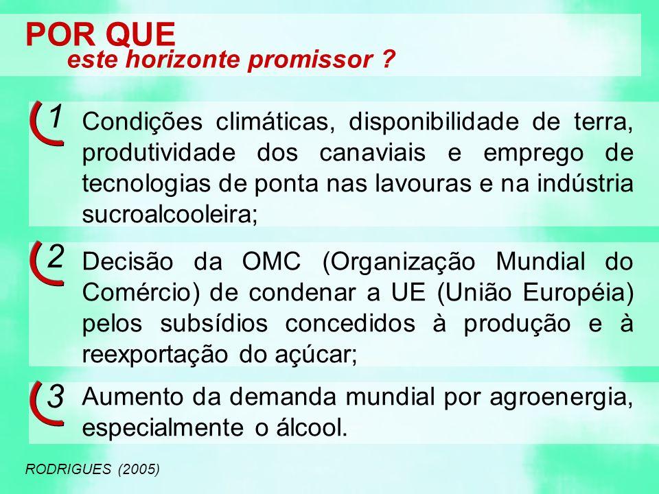 POR QUE este horizonte promissor ? RODRIGUES (2005) Condições climáticas, disponibilidade de terra, produtividade dos canaviais e emprego de tecnologi
