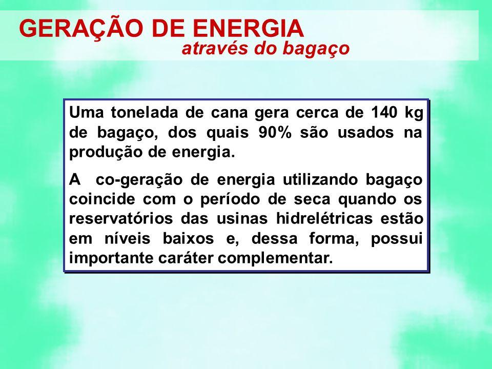 GERAÇÃO DE ENERGIA através do bagaço Uma tonelada de cana gera cerca de 140 kg de bagaço, dos quais 90% são usados na produção de energia.
