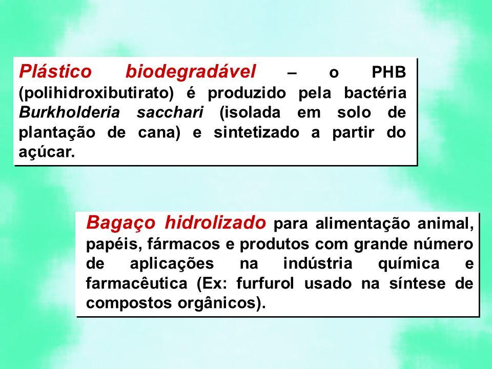 Plástico biodegradável – o PHB (polihidroxibutirato) é produzido pela bactéria Burkholderia sacchari (isolada em solo de plantação de cana) e sintetiz