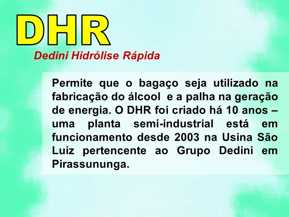 Dedini Hidrólise Rápida Permite que o bagaço seja utilizado na fabricação do álcool e a palha na geração de energia. O DHR foi criado há 10 anos – uma