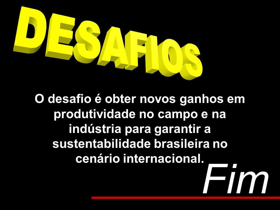 O desafio é obter novos ganhos em produtividade no campo e na indústria para garantir a sustentabilidade brasileira no cenário internacional. Fim
