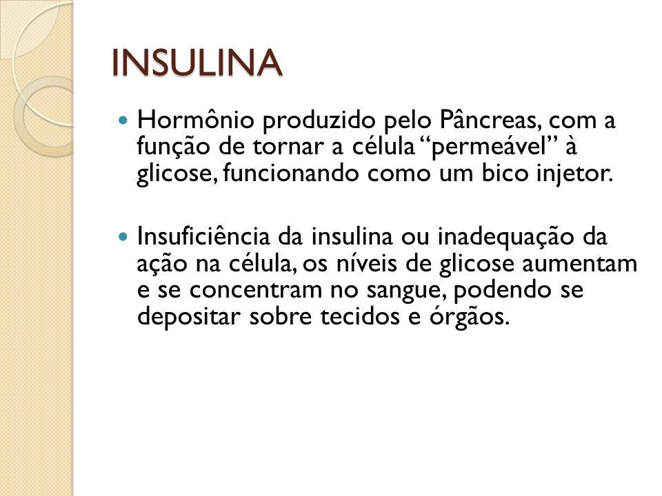 INSULINA Hormônio produzido pelo Pâncreas, com a função de tornar a célula permeável à glicose, funcionando como um bico injetor. Insuficiência da ins