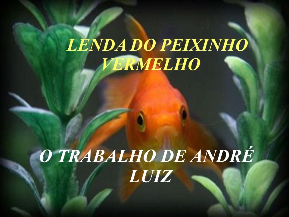 LENDA DO PEIXINHO VERMELHO O TRABALHO DE ANDRÉ LUIZ