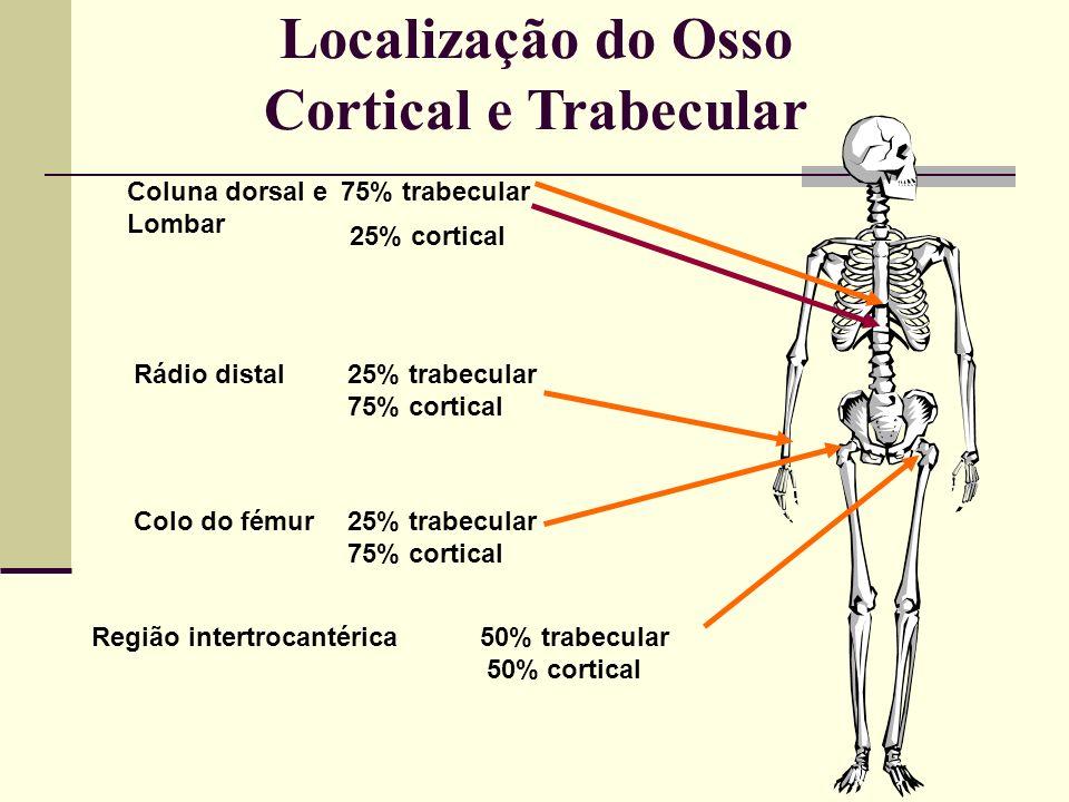 COMPOSIÇÃO DO OSSO Mineral - 65% (Hidroxiapatite) Matriz - 35% (Colagénio tipo I) Células (Osteocitos; Osteoblastos; Osteoclastos) Água