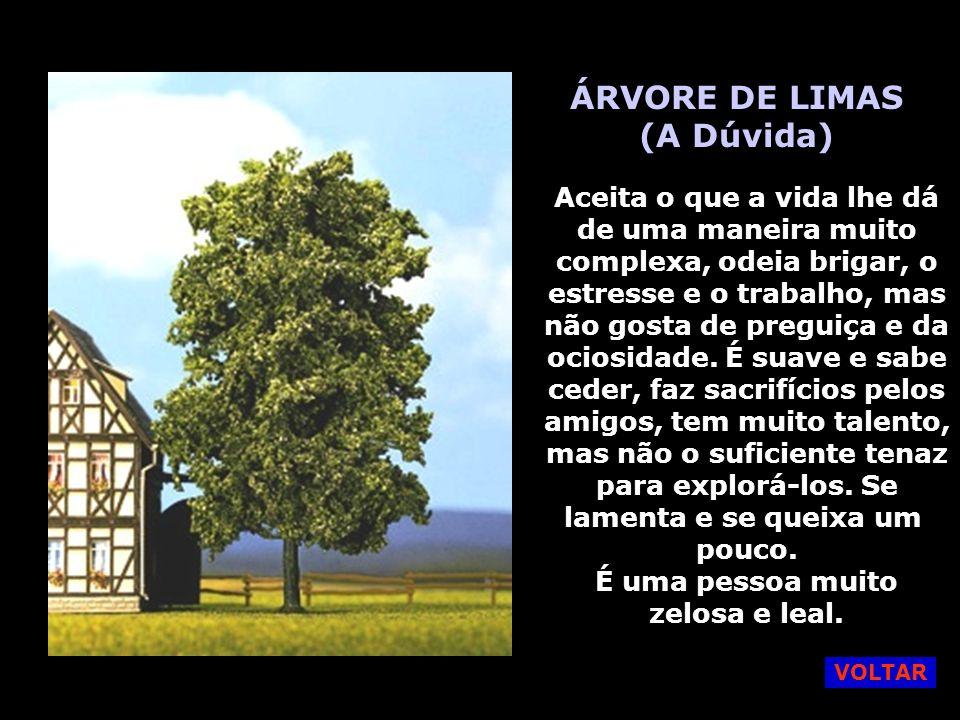 SALGUEIRO CHORÃO (A Melancolia) Uma pessoa bela, mas melancólica, atrativa, muito empática, ama as coisas belas e tem bom gosto. Ama viajar, sonhadora