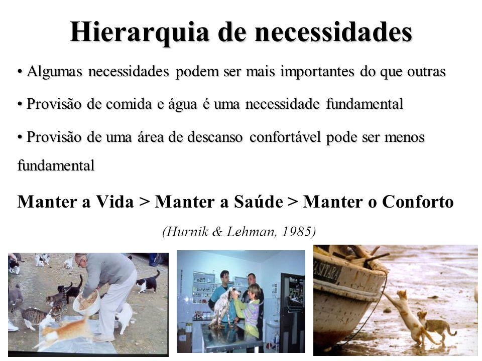 Hierarquia de necessidades Algumas necessidades podem ser mais importantes do que outras Algumas necessidades podem ser mais importantes do que outras
