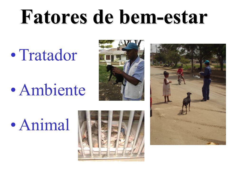 Fatores de bem-estar Tratador Ambiente Animal