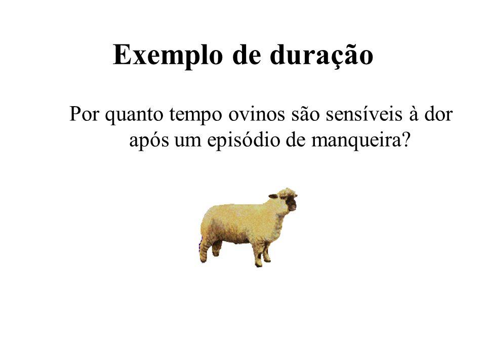 Exemplo de duração Por quanto tempo ovinos são sensíveis à dor após um episódio de manqueira?