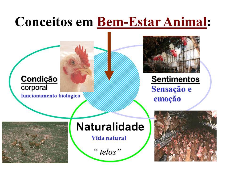 Sentimentos Sensação e emoção emoção Condição corporal funcionamento biológico Naturalidade telos telos Conceitos em Bem-Estar Animal: Vida natural