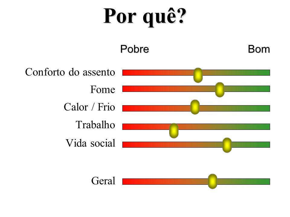 Por quê? Conforto do assento Fome Calor / Frio Trabalho Vida social Geral PobreBom