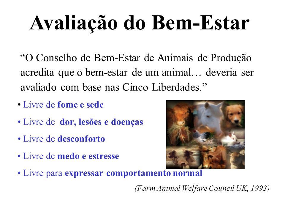 O Conselho de Bem-Estar de Animais de Produção acredita que o bem-estar de um animal… deveria ser avaliado com base nas Cinco Liberdades. Livre de fom