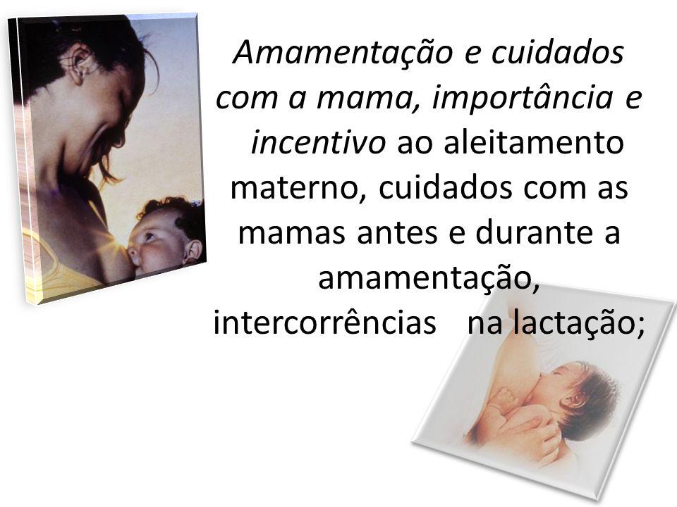 Amamentação e cuidados com a mama, importância e incentivo ao aleitamento materno, cuidados com as mamas antes e durante a amamentação, intercorrências na lactação;