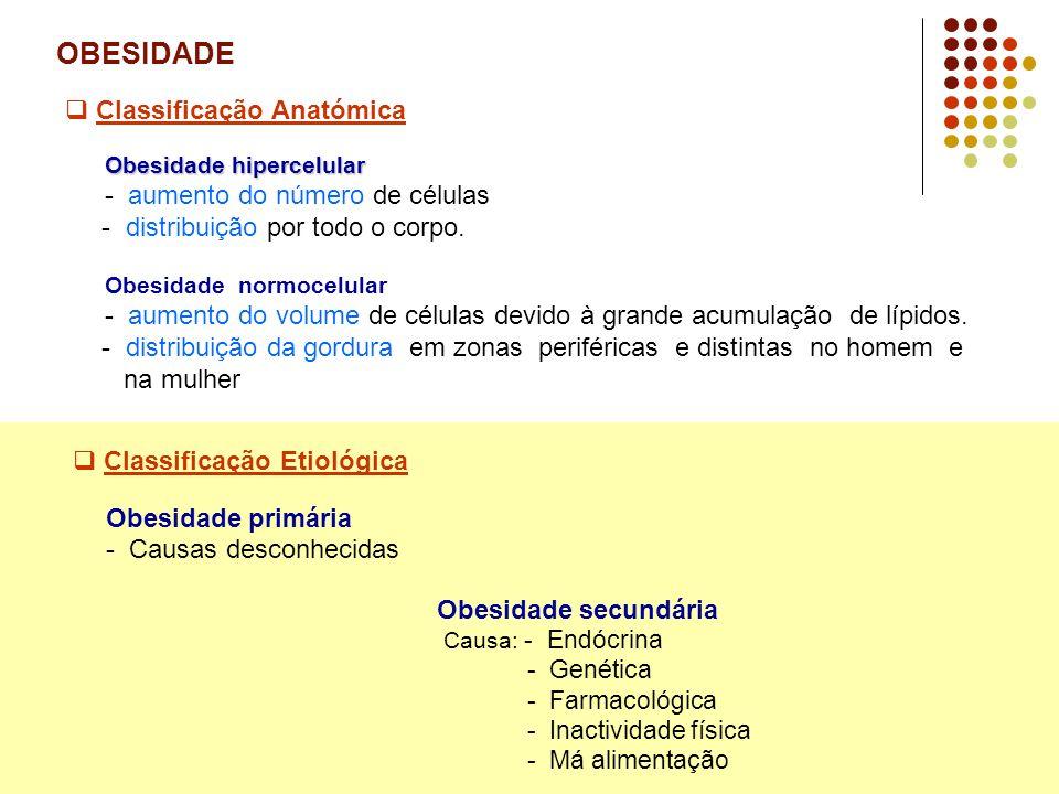 OBESIDADE - Estudos e Prevalência - Emílio Peres.