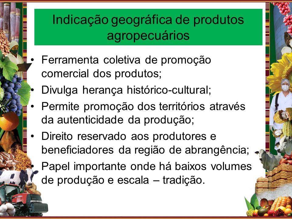 Indicação geográfica de produtos agropecuários Ferramenta coletiva de promoção comercial dos produtos; Divulga herança histórico-cultural; Permite pro