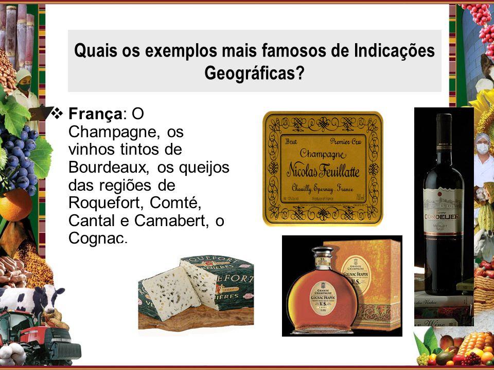 Quais os exemplos mais famosos de Indicações Geográficas? França: O Champagne, os vinhos tintos de Bourdeaux, os queijos das regiões de Roquefort, Com