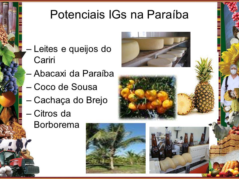 Potenciais IGs na Paraíba –Leites e queijos do Cariri –Abacaxi da Paraíba –Coco de Sousa –Cachaça do Brejo –Citros da Borborema