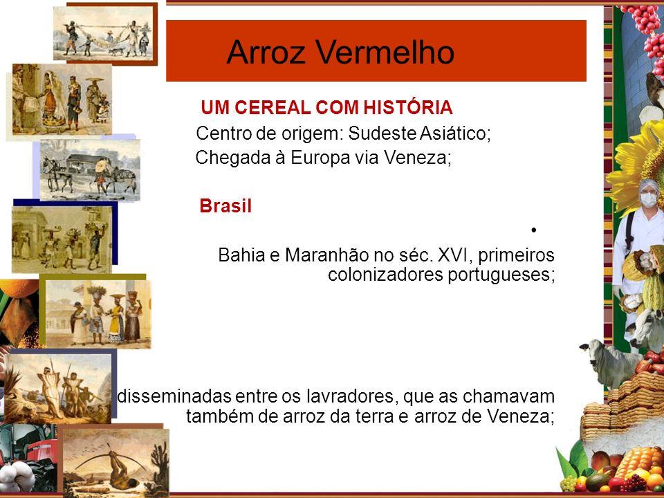 Paraíba Arroz Vermelho UM CEREAL COM HISTÓRIA Centro de origem: Sudeste Asiático; Chegada à Europa via Veneza; Brasil Bahia e Maranhão no séc. XVI, pr