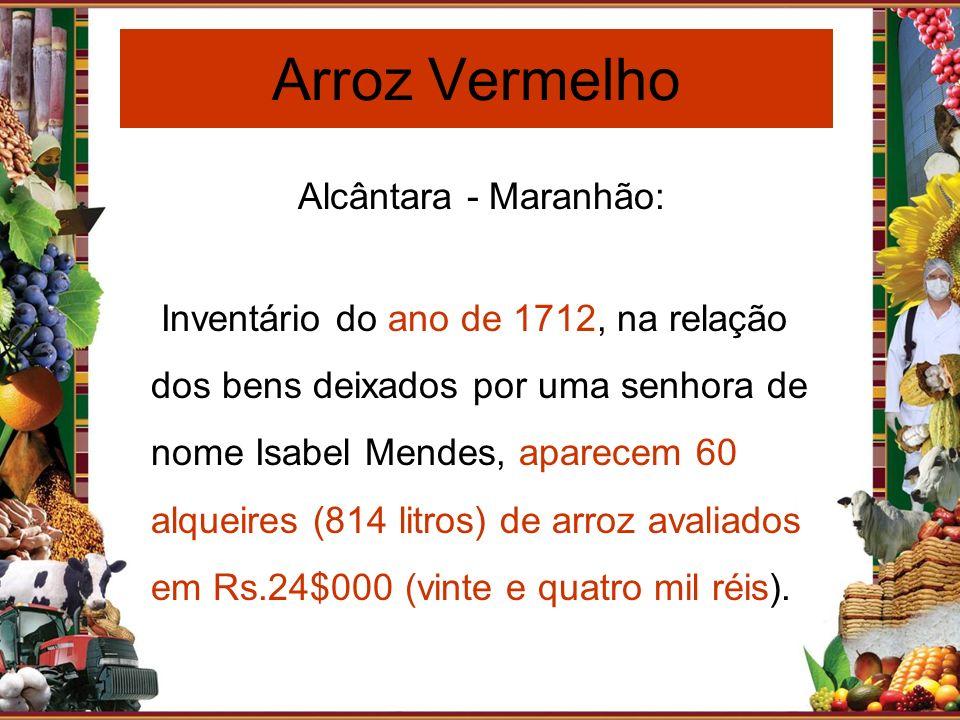 Arroz Vermelho Alcântara - Maranhão: Inventário do ano de 1712, na relação dos bens deixados por uma senhora de nome Isabel Mendes, aparecem 60 alquei