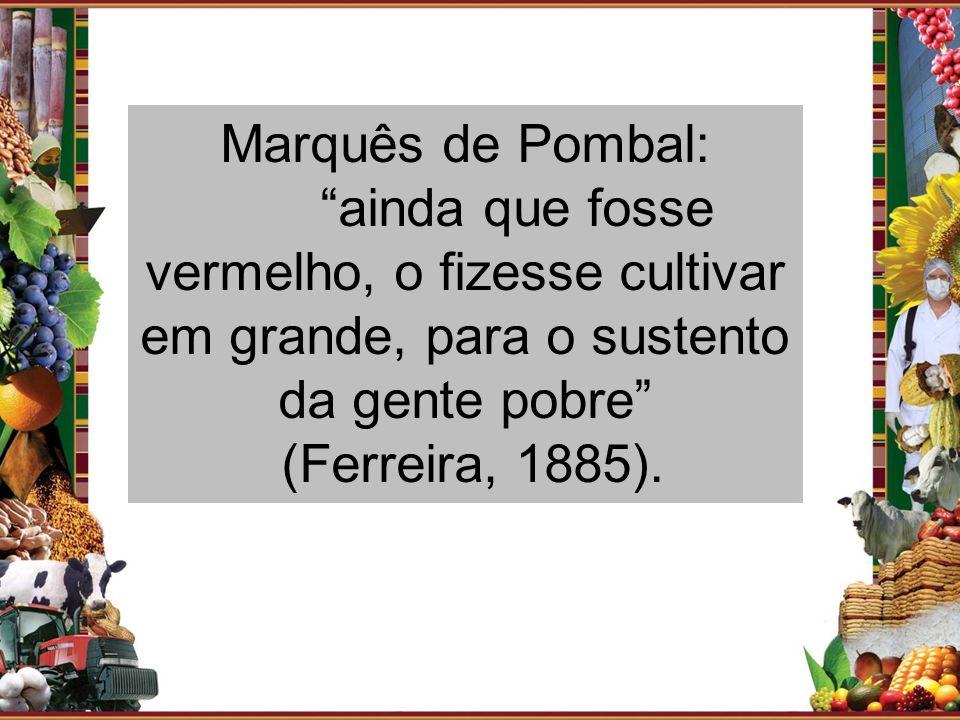Marquês de Pombal: ainda que fosse vermelho, o fizesse cultivar em grande, para o sustento da gente pobre (Ferreira, 1885).