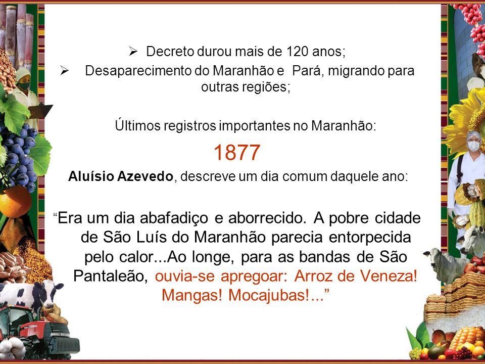 Decreto durou mais de 120 anos; Desaparecimento do Maranhão e Pará, migrando para outras regiões; Últimos registros importantes no Maranhão: 1877 Aluí