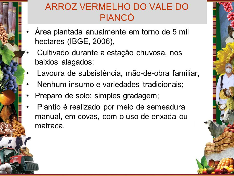 ARROZ VERMELHO DO VALE DO PIANCÓ Área plantada anualmente em torno de 5 mil hectares (IBGE, 2006), Cultivado durante a estação chuvosa, nos baixios al