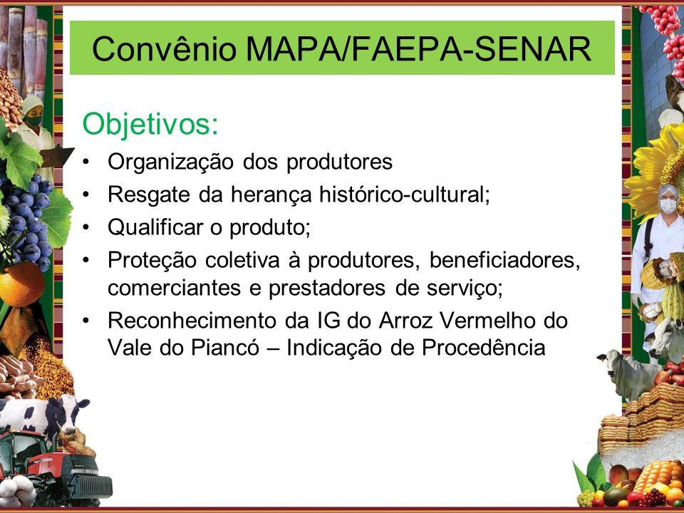 Convênio MAPA/FAEPA-SENAR Objetivos: Organização dos produtores Resgate da herança histórico-cultural; Qualificar o produto; Proteção coletiva à produ