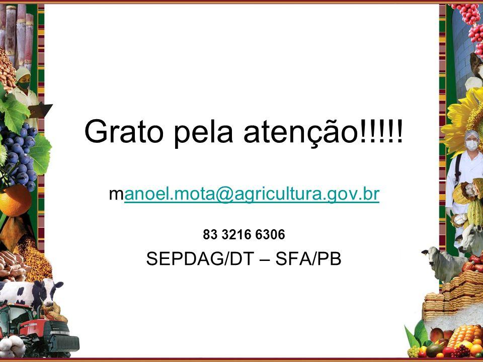 Grato pela atenção!!!!! manoel.mota@agricultura.gov.branoel.mota@agricultura.gov.br 83 3216 6306 SEPDAG/DT – SFA/PB