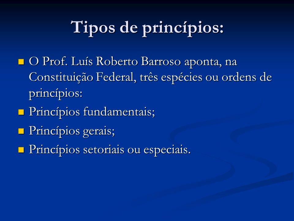 Tipos de princípios: O Prof.