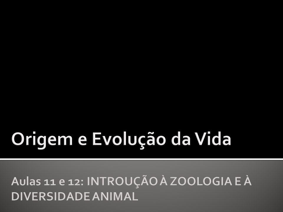 O que é Zoologia?Quais são as características de um animal?E de um invertebrado?Quem são os animais.