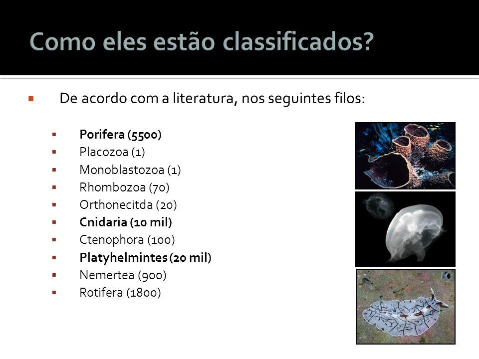 De acordo com a literatura, nos seguintes filos: Porifera (5500) Placozoa (1) Monoblastozoa (1) Rhombozoa (70) Orthonecitda (20) Cnidaria (10 mil) Cte