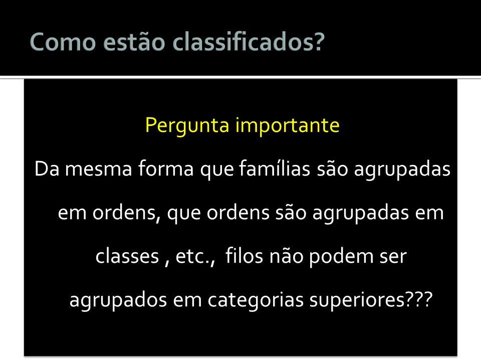 Pergunta importante Da mesma forma que famílias são agrupadas em ordens, que ordens são agrupadas em classes, etc., filos não podem ser agrupados em c