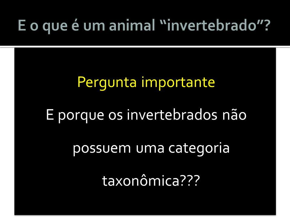 Pergunta importante E porque os invertebrados não possuem uma categoria taxonômica??? Pergunta importante E porque os invertebrados não possuem uma ca