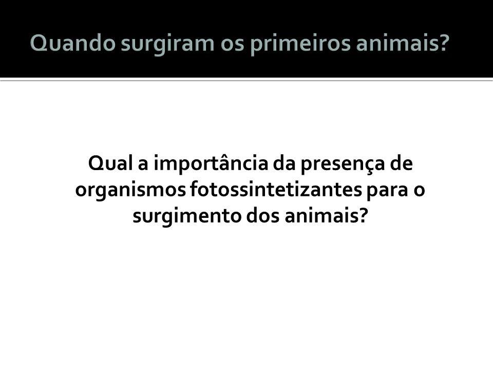 Qual a importância da presença de organismos fotossintetizantes para o surgimento dos animais?