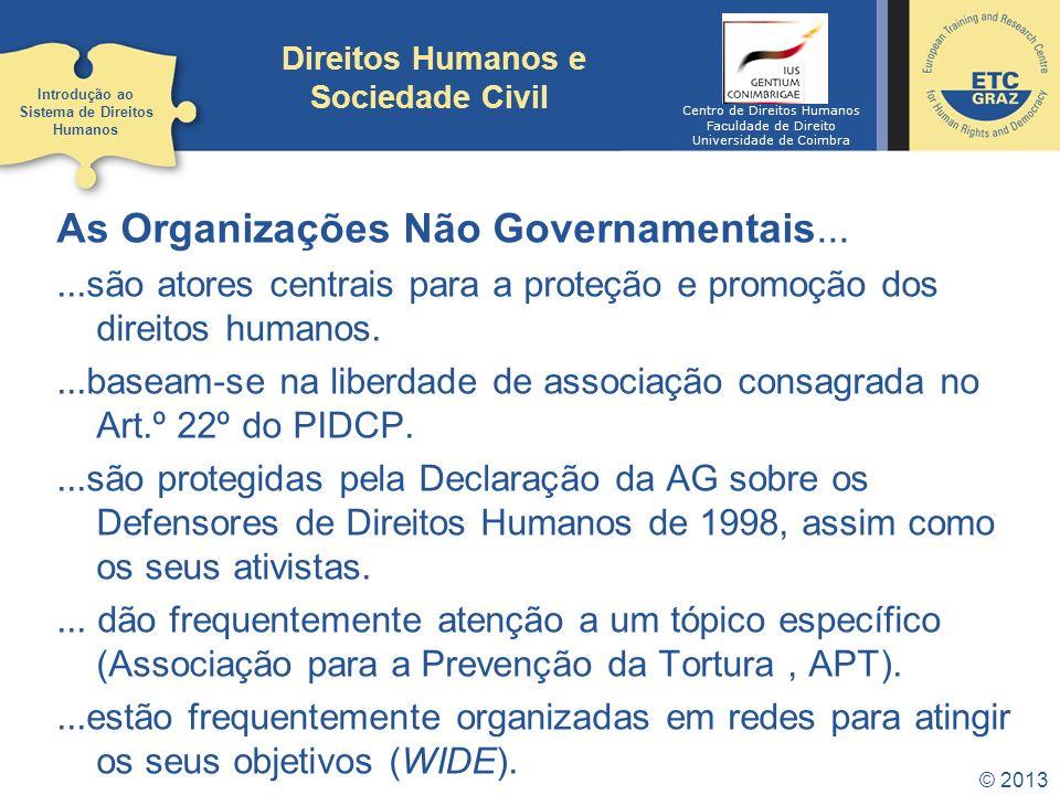 © 2013 Direitos Humanos e Sociedade Civil As Organizações Não Governamentais......são atores centrais para a proteção e promoção dos direitos humanos.