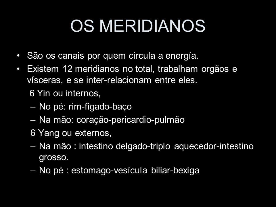 OS MERIDIANOS São os canais por quem circula a energía. Existem 12 meridianos no total, trabalham orgãos e vísceras, e se inter-relacionam entre eles.