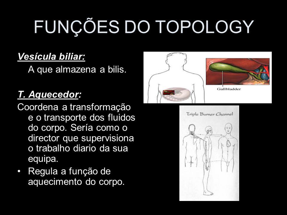 FUNÇÕES DO TOPOLOGY Vesícula biliar: A que almazena a bilis. T. Aquecedor: Coordena a transformação e o transporte dos fluidos do corpo. Sería como o