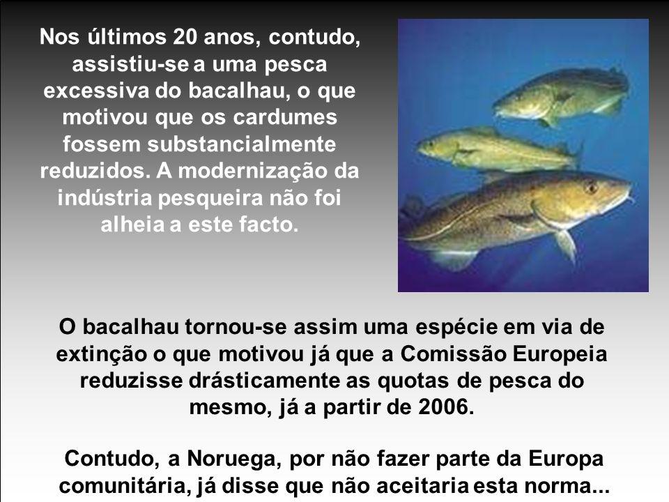 Nos últimos 20 anos, contudo, assistiu-se a uma pesca excessiva do bacalhau, o que motivou que os cardumes fossem substancialmente reduzidos.