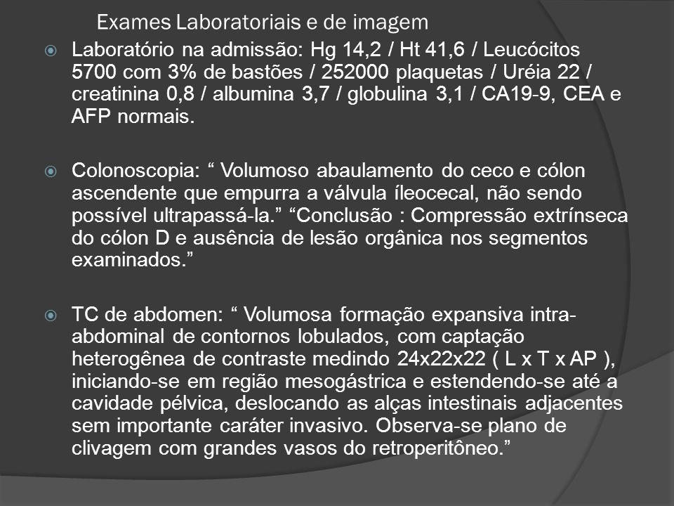 Exames Laboratoriais e de imagem Laboratório na admissão: Hg 14,2 / Ht 41,6 / Leucócitos 5700 com 3% de bastões / 252000 plaquetas / Uréia 22 / creati
