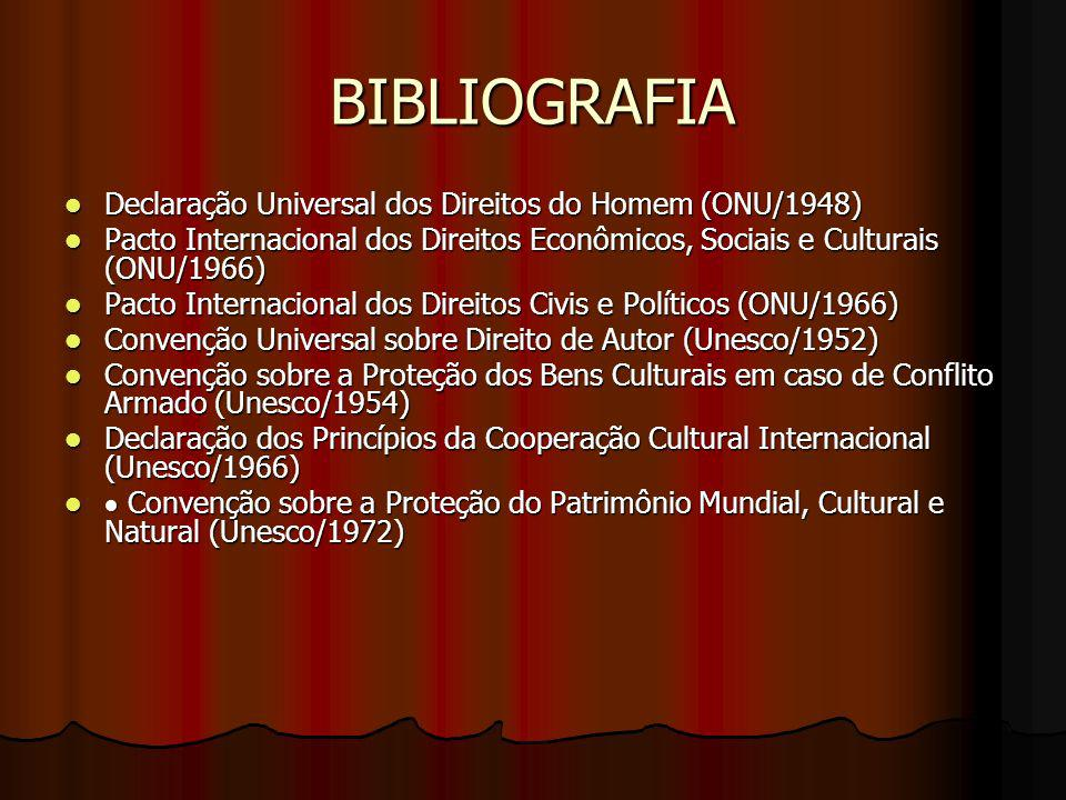 BIBLIOGRAFIA Declaração Universal dos Direitos do Homem (ONU/1948) Declaração Universal dos Direitos do Homem (ONU/1948) Pacto Internacional dos Direi