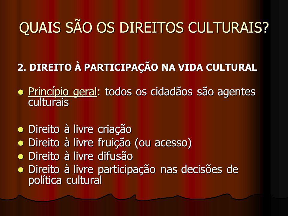 QUAIS SÃO OS DIREITOS CULTURAIS? 2. DIREITO À PARTICIPAÇÃO NA VIDA CULTURAL Princípio geral: todos os cidadãos são agentes culturais Princípio geral:
