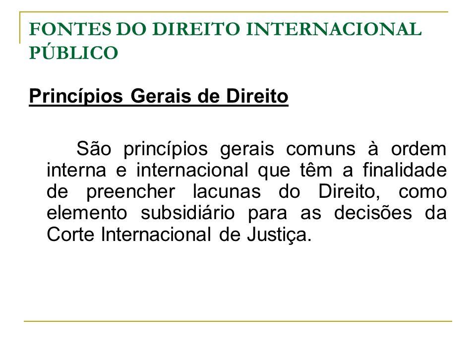FONTES DO DIREITO INTERNACIONAL PÚBLICO Princípios Gerais de Direito São princípios gerais comuns à ordem interna e internacional que têm a finalidade