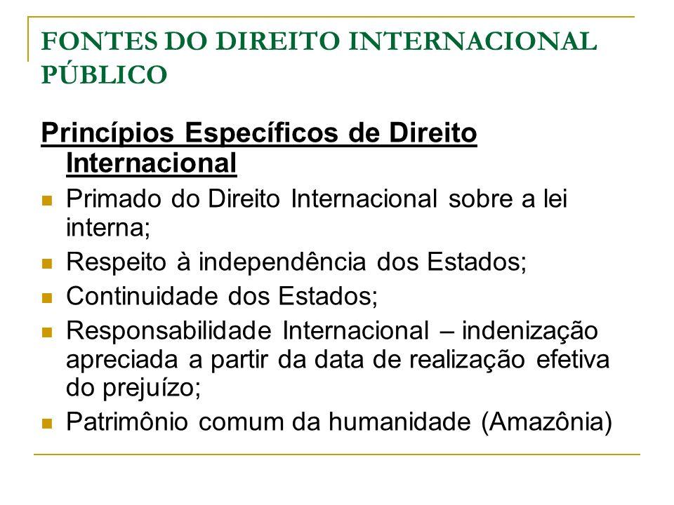 FONTES DO DIREITO INTERNACIONAL PÚBLICO Princípios Específicos de Direito Internacional Primado do Direito Internacional sobre a lei interna; Respeito