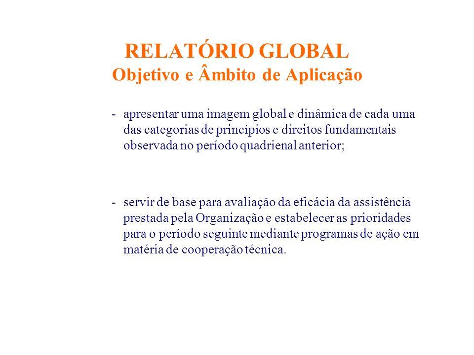 RELATÓRIO GLOBAL Objetivo e Âmbito de Aplicação -apresentar uma imagem global e dinâmica de cada uma das categorias de princípios e direitos fundament