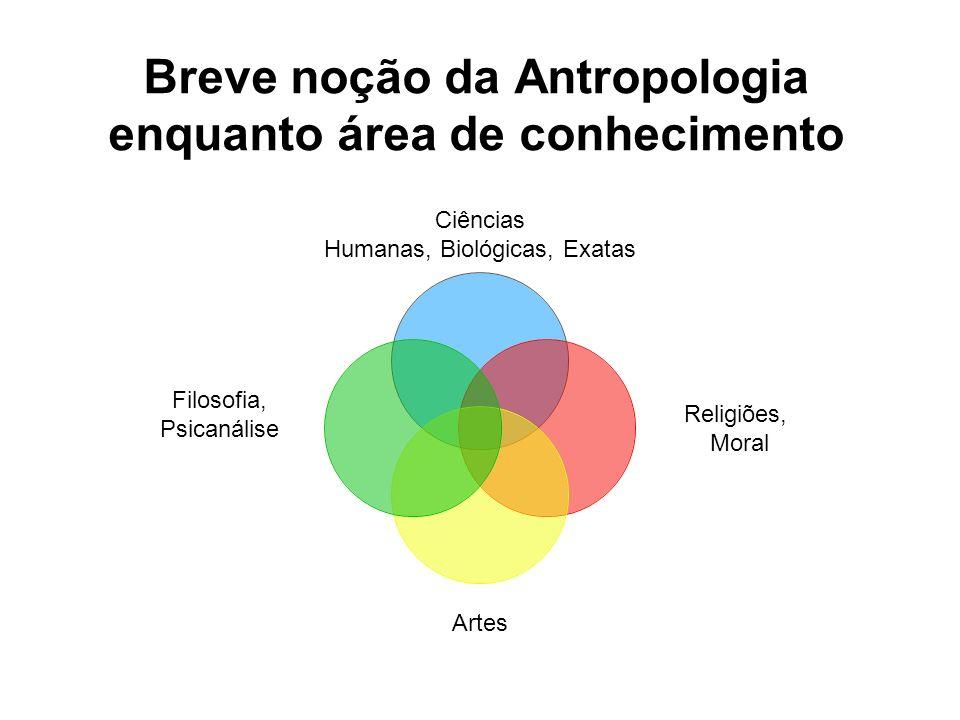 Breve noção da Antropologia enquanto área de conhecimento Ciências Humanas, Biológicas, Exatas Religiões, Moral Artes Filosofia, Psicanálise