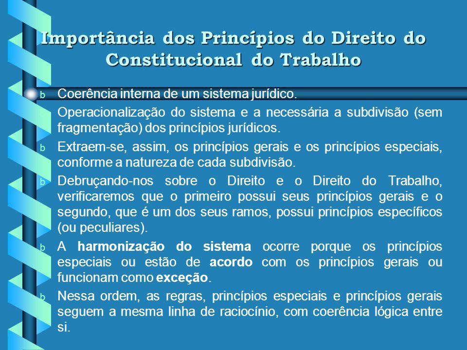 Objeto do Novo Direito Constitucional do Trabalho b Construir e manter os pressupostos elementares de uma vida digna de ser vivida, ou seja, plena de