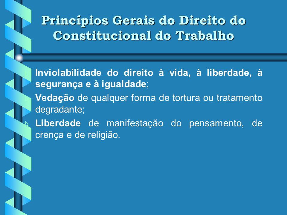 Princípios Gerais do Direito do Constitucional do Trabalho b Correção das desigualdades sociais e regionais (traduz o valor da igualdade material em c