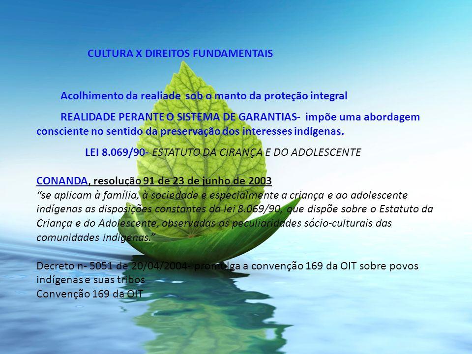 CULTURA X DIREITOS FUNDAMENTAIS Acolhimento da realiade sob o manto da proteção integral REALIDADE PERANTE O SISTEMA DE GARANTIAS- impõe uma abordagem