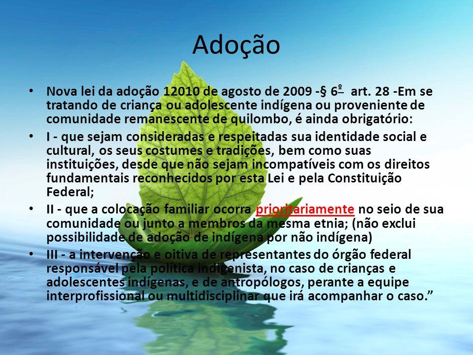 Adoção Nova lei da adoção 12010 de agosto de 2009 -§ 6 º art. 28 -Em se tratando de criança ou adolescente indígena ou proveniente de comunidade reman